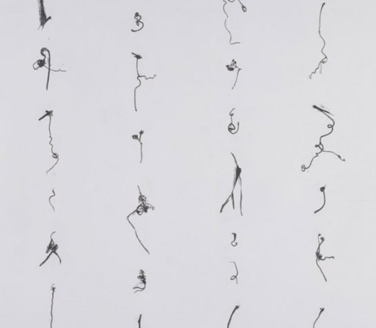 Cui Fei - Tracing the Origin – 002